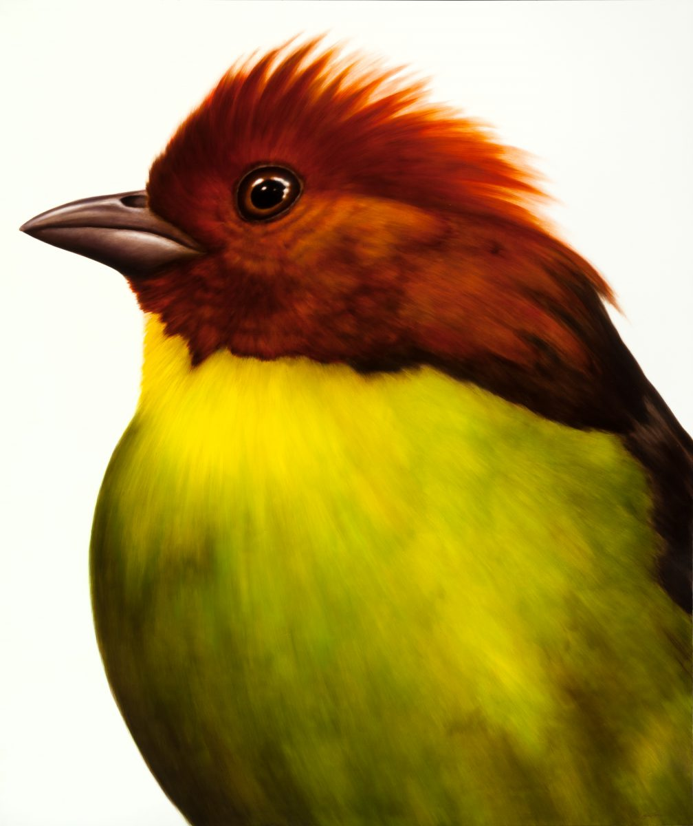 chartreuse-jason-horton-artist