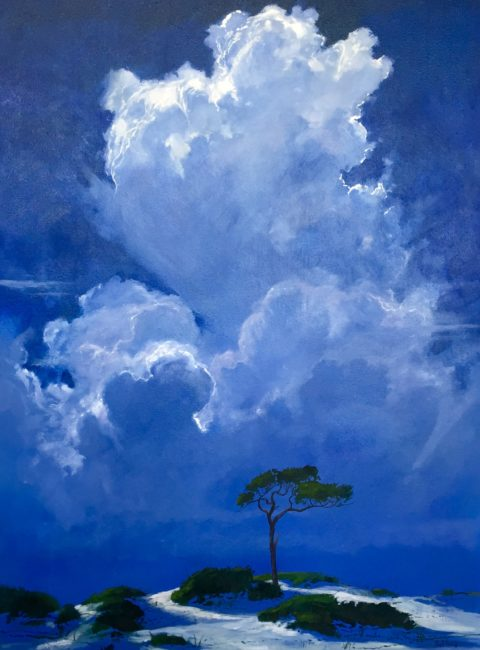 pine-and-cloud