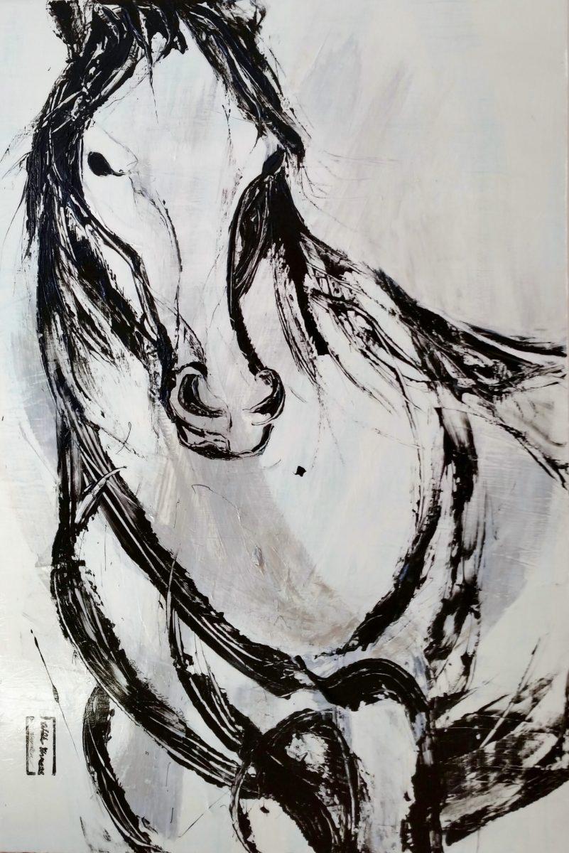MWWH # 250 Hayden @2015  48x72  Spr Crk Bas wild stallion,Dis Val.